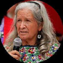 Abuela Tolmani
